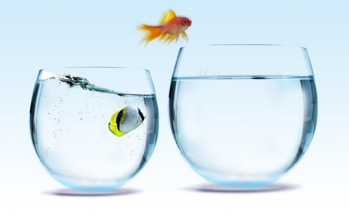 ۴ نشانه که به شما می گوید باید زودتر شغلتان را تغییر دهید !
