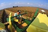 شرایط استخدام مهندس کشاورزی و درآمد این شغل در ایران و جهان