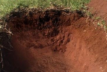 آشنایی با کار خاک شناس ، چگونه خاک شناس شوم؟