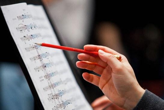 وضعیت کار و استخدام آهنگساز و درآمد او چگونه است؟