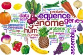 علم تغذیه چیست؟ کار متخصص تغذیه چیست؟
